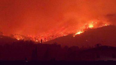 Fermato presunto piromane Monte Serra, è un volontario antincendio