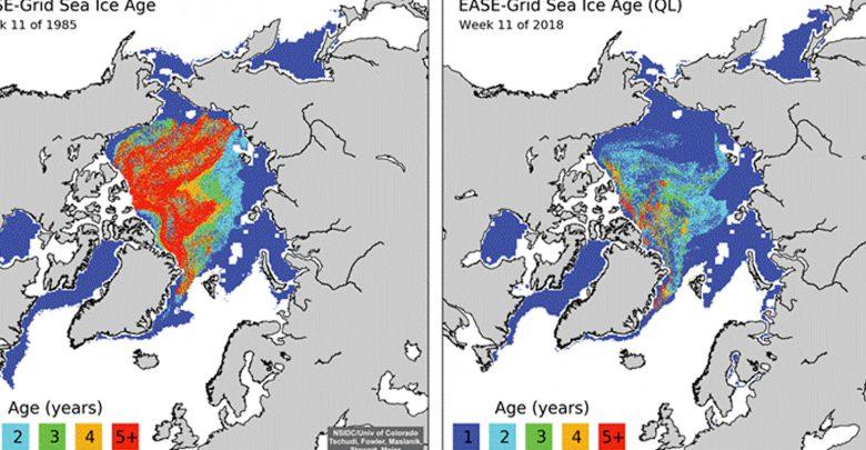 Artico bollente, il 2018 è il secondo anno più caldo mai registrato