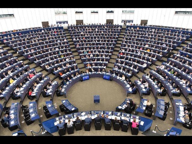 Elezioni europee movimento 5 stelle annuncia le cinque for Parlamentari 5 stelle nomi