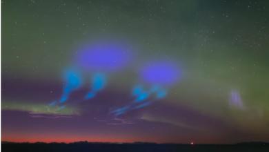 Norvegia, esperimento NASA