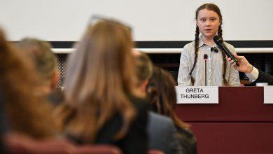 Greta Thunberg Senato