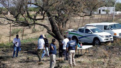 Messico, trovati resti umani