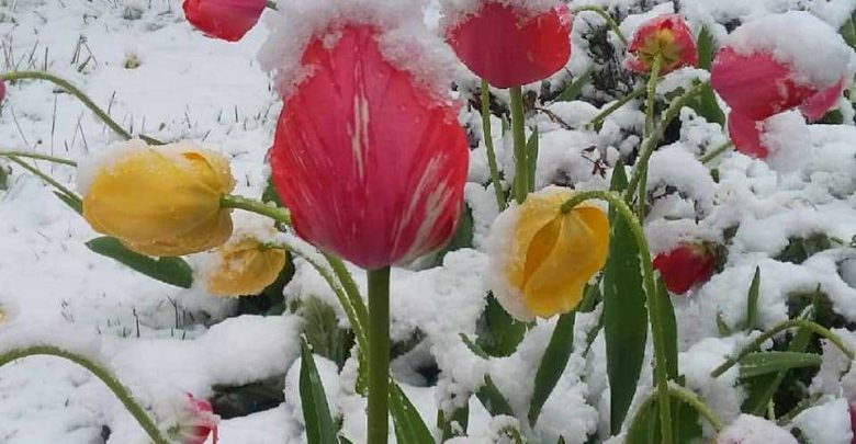 inverno neve Germania
