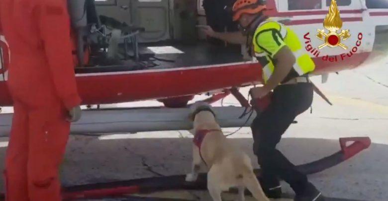 cani elicotteri video