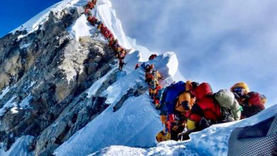 everest coda vetta