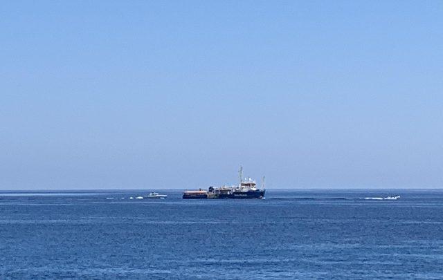 migranti sea watch salvini