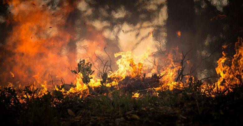 incendi incendio fuoco
