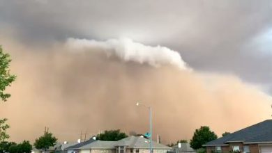 tempesta di sabbia texas haboob video