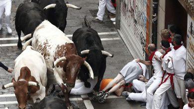 Pamplona tori