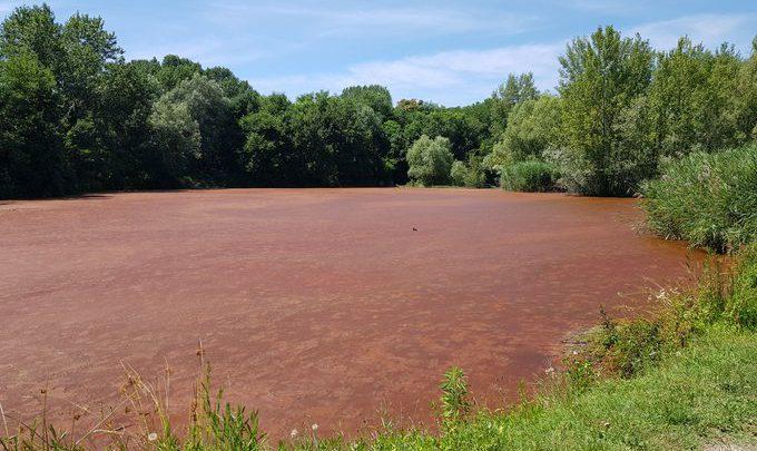 acqua rossa lago milano