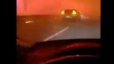 incendio portogallo video