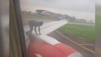 nigeria uomo aereo video