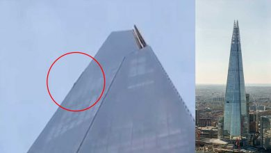 uomo scala grattacielo The Shard Londra
