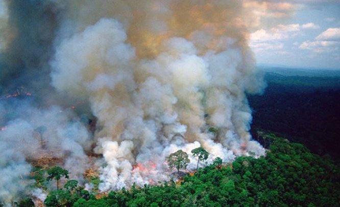 Amazzonia incendi
