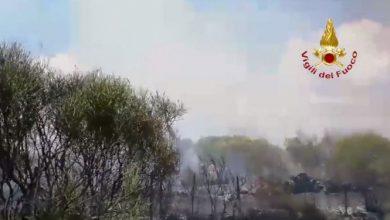Sicilia incendio