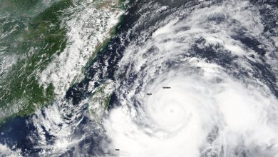 tifone lekima foto