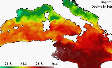 mediterraneo temperatura oggi