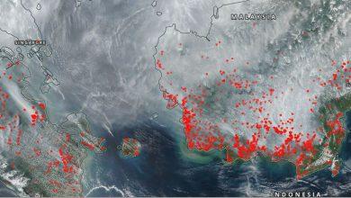 borneo incendi singapore