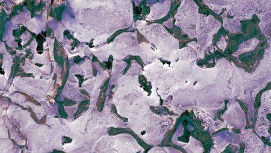permafrost siberia