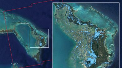 bahamas dorian satellite