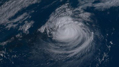 tifone faxai