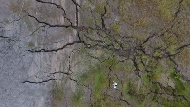 vulcano crepe Trinidad e Tobago