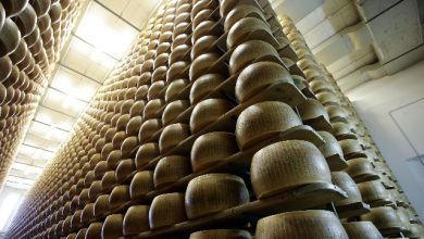 dazi parmigiano made in italy