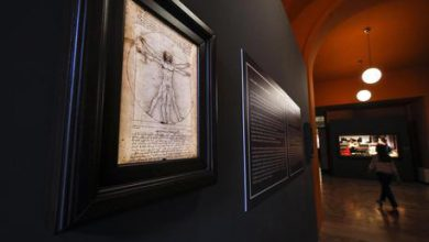 Leonardo, Uomo Vitruviano