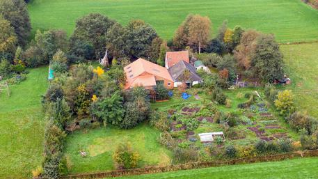 Olanda fattoria
