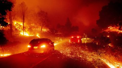 incendi california allarme