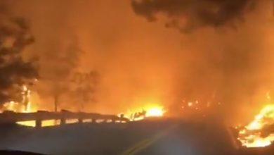 incendio california kincade fire