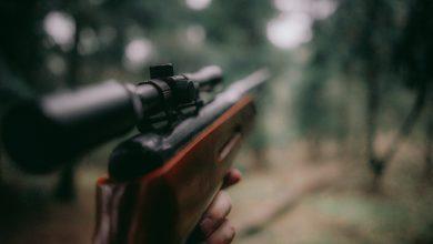 Elba cacciatore ferito
