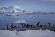 parco marino protetto antartide