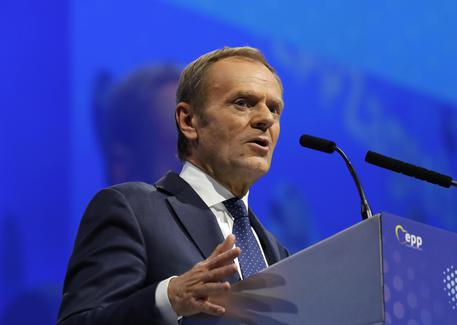 Ppe Donald Tusk