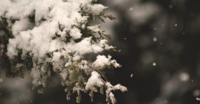 maltempo neve
