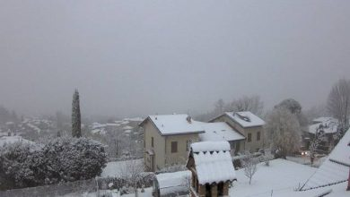 neve oggi webcam