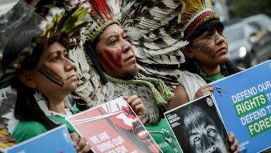 Brasile indigeni foresta amazzonica